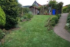 Gartenteich_2-7